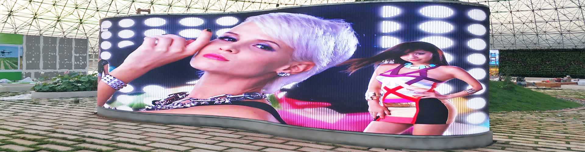 Flexible Video Display