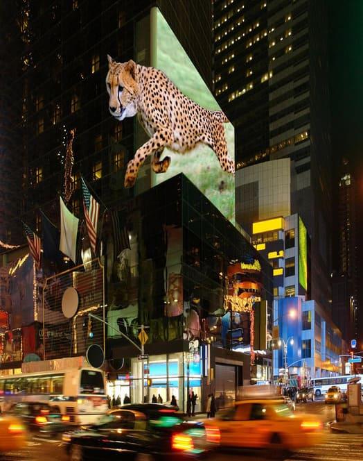 3D LED Screen Chengdu Lion